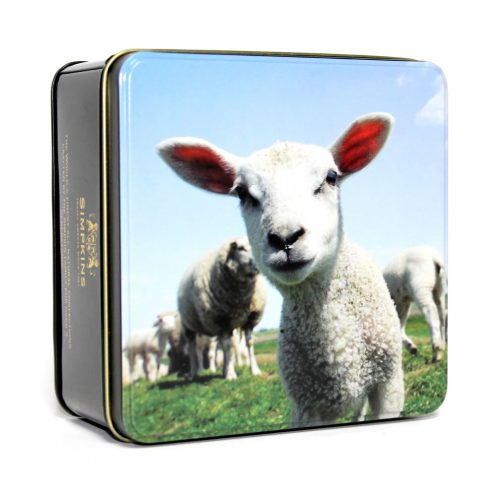 British Farmyard Cuties - Lucy the Lamb Gift Tin